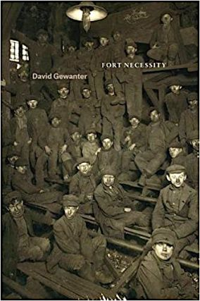 FORT NECESSITY. David Gewanter