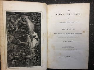 THE SYLVA AMERICANA; OR A DESCRIPTION OF THE FOREST TREES INDIGENOUS TO THE UNITED STATES...